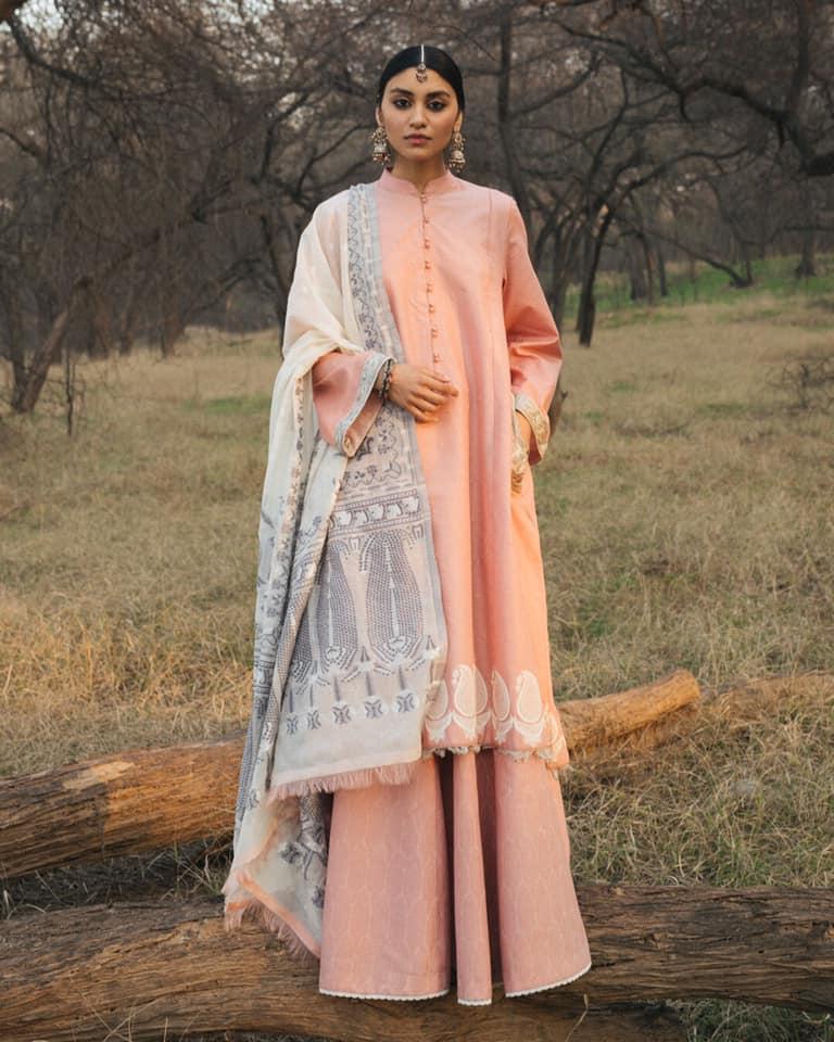 Zara ShahJahan Lawn Collection 2020 26 2B