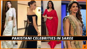 PAKISTANI-CELEBRITIES-IN-SAREE