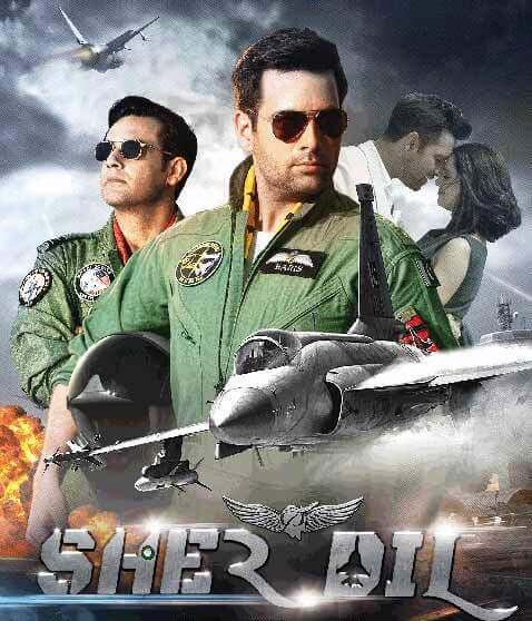 Pakistani Movies on Netflix Sherdil
